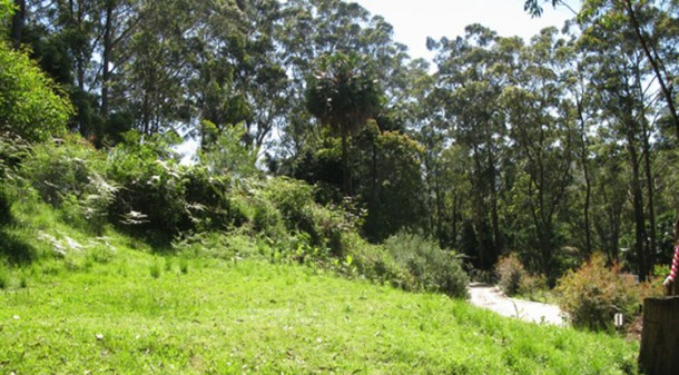 The bush block is described by owner Giles as a 'bushfire prone ski slope'.