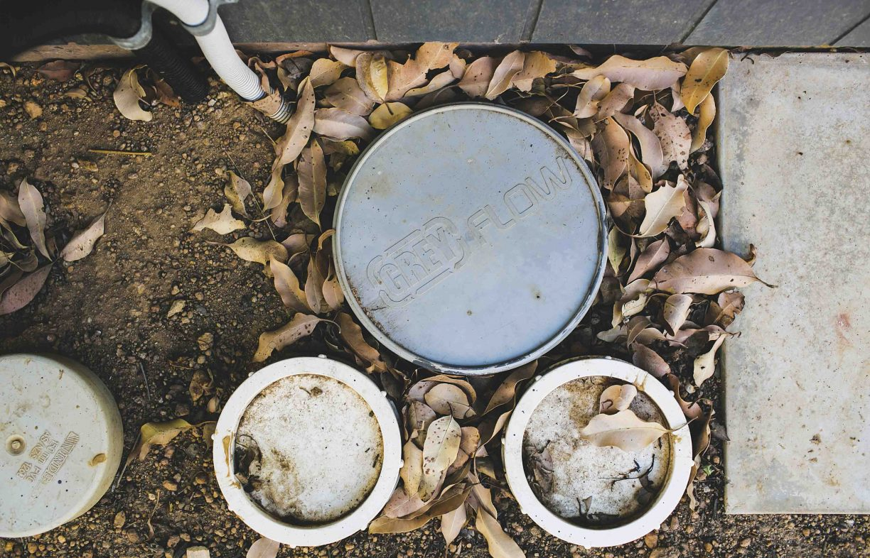 A patch of dirt covered with brown leaves, and disc-shaped plastic water pipes emerging from the ground.