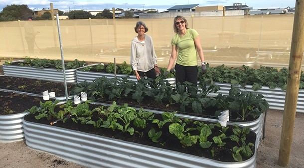 Large communal food gardens are already in place and providing fresh food for visitors and residents in the neighbouring estate. The garden is expected to produce over $130,000 of food each year when fully constructed.