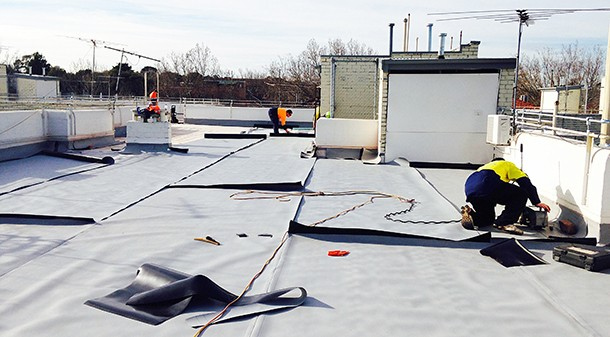 The green roof is fitted with a sensitive leak detection system to help avoid extensive excavation if a problem emerges.