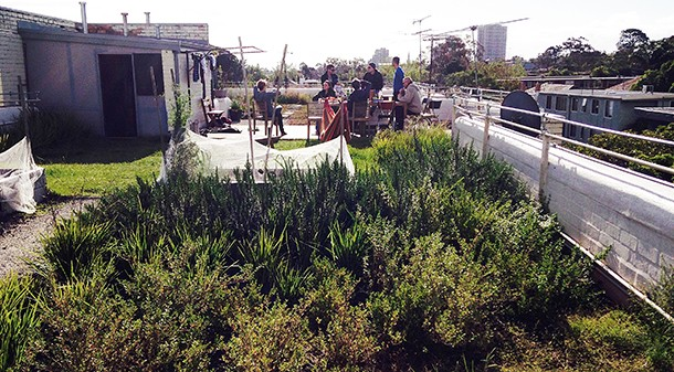 Westbury Street's green roof is providing a welcome focal point for residents, who share its upkeep and use it as a gathering space for barbecues, meetings and even movie nights.