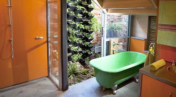 The bathroom walls feature locally produced recycled plastic, a green wall planter and old-school cast iron bath.