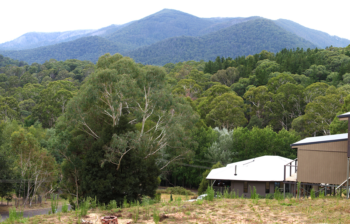 The site boasts beautiful mountain views to the north and north-east. The house site had already been cut before the couple purchased it; to save costs Sam has worked with the lay of the land with his design.