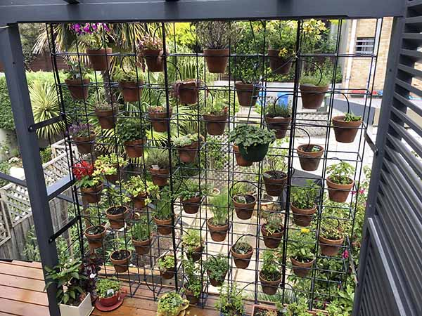 We Saw A Vertical Garden We Liked At A Café In Melbourne, Which Inspired  Our Version Made By A Local Steel Fabricator. Since Then A Local Product  Reogro Has ...