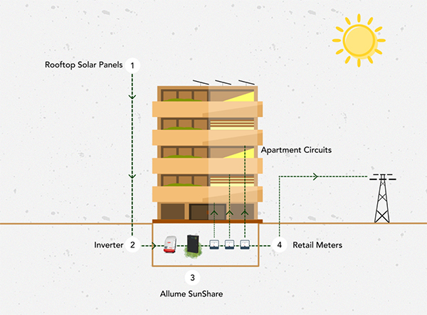 Raising the roof: Solar for renters and apartment dwellers - Renew