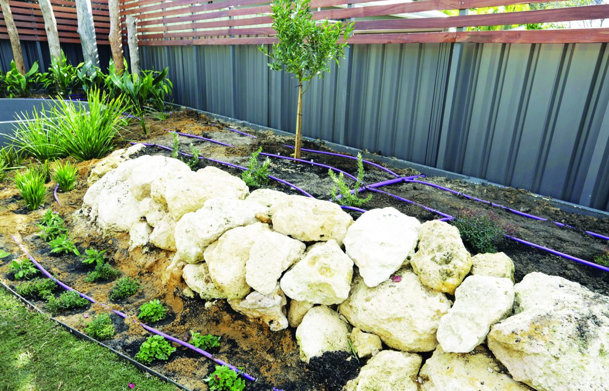 Greywater is fed to the garden in Josh's House (joshshouse.com.au) via a series of drip-feed lines. Here they can be seen before being covered with 100mm of mulch. Some states, such as WA, only allow sub-surface distribution of untreated greywater.