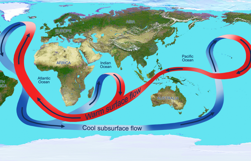 Figure 3. A depiction of the global ocean circulation. In the Atlantic Ocean, warm water travels north at the surface, while cooler water travels south at depth. Source: NASA