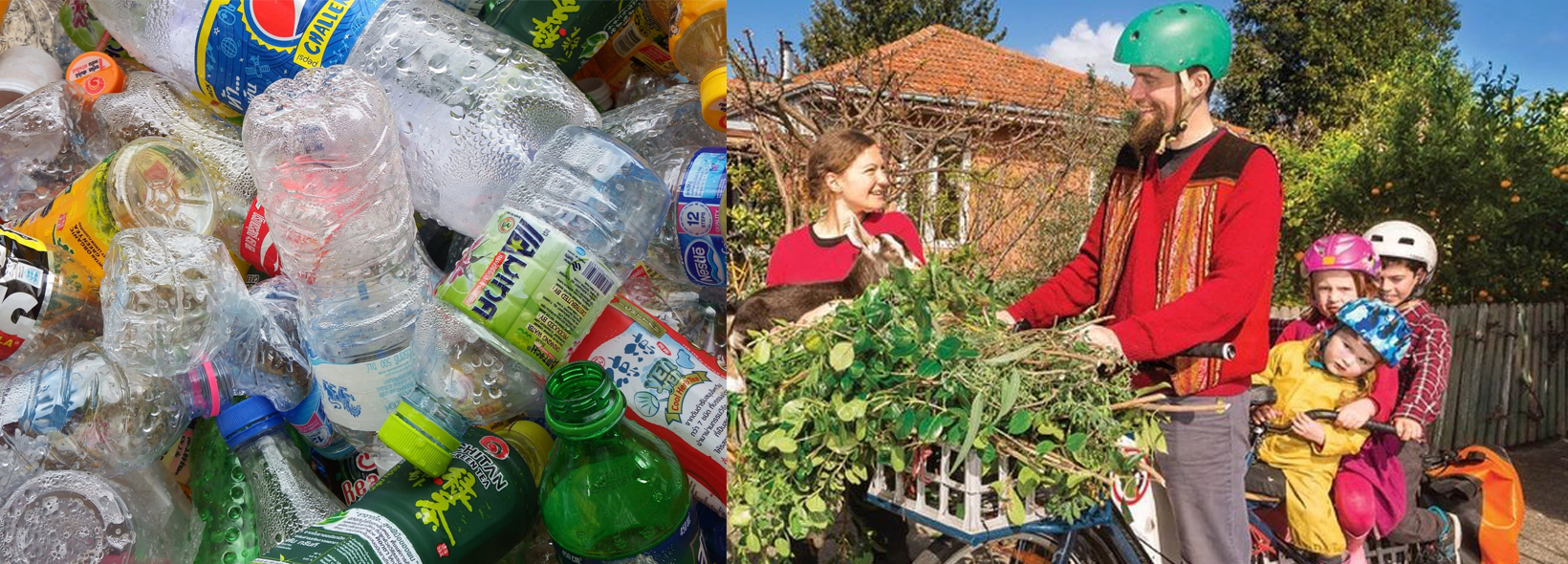 Living Plastic Free and Suburban Permaculture