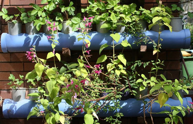 DIY: Self-watering vertical garden