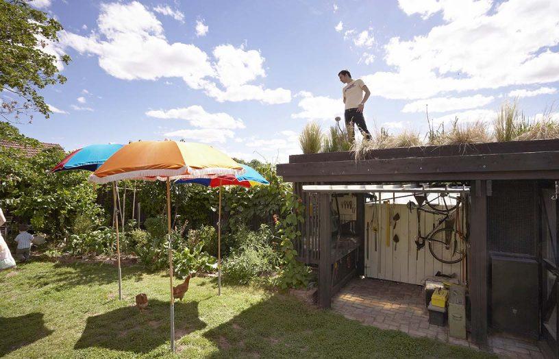 Gardening up high