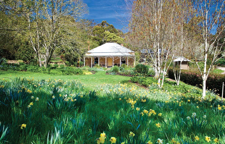 Terrific Grass Is Green Renew Alphanode Cool Chair Designs And Ideas Alphanodeonline