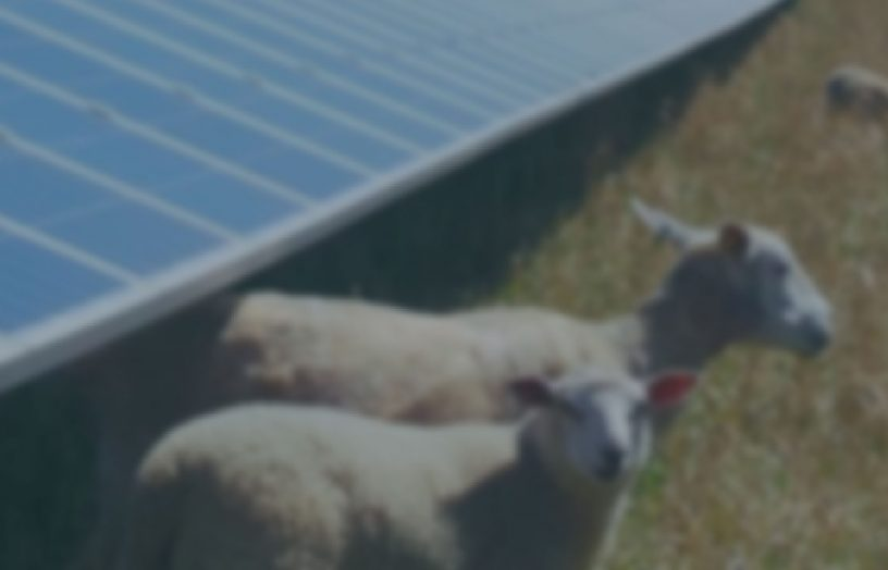 9/6/21 – Power to the People: Goulburn Community Energy Cooperative Dispatchable Solar Farm